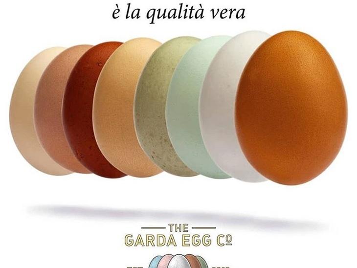 Leggi blog | Lake Garda Eggs